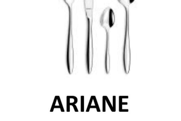 AMEFA_Ariane_v2