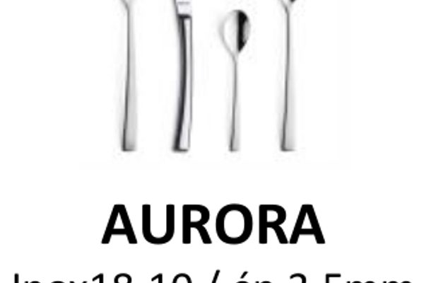 AMEFA_Aurora_v2